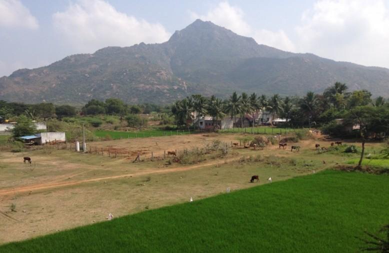 Tiruvannamalai, India